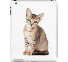 Charming kitten iPad Case/Skin