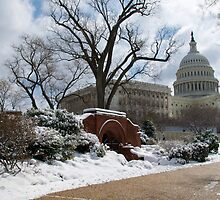 Snow-Lined Path to the Capitol by Paul Bohman