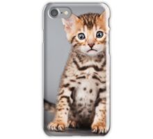 Bengal kitten iPhone Case/Skin