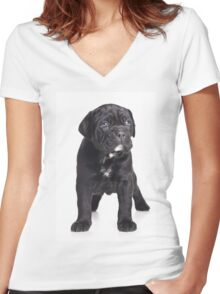Black Cane Corso puppy Women's Fitted V-Neck T-Shirt