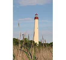 Cape May Lighthouse through the Reeds Photographic Print