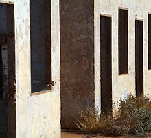 Pedirka windows by Bryan Cossart