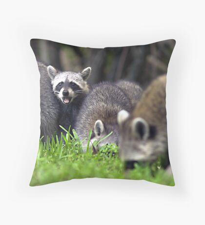 Mad raccoon Throw Pillow