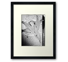 Dead flowers pressed into book  Framed Print