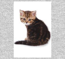 fluffy tabby kitten One Piece - Long Sleeve