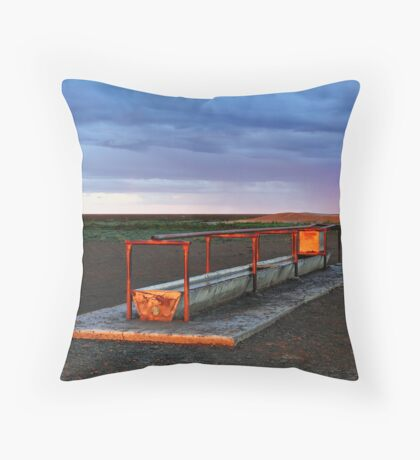 Cattle Trough - Hay Plains Throw Pillow