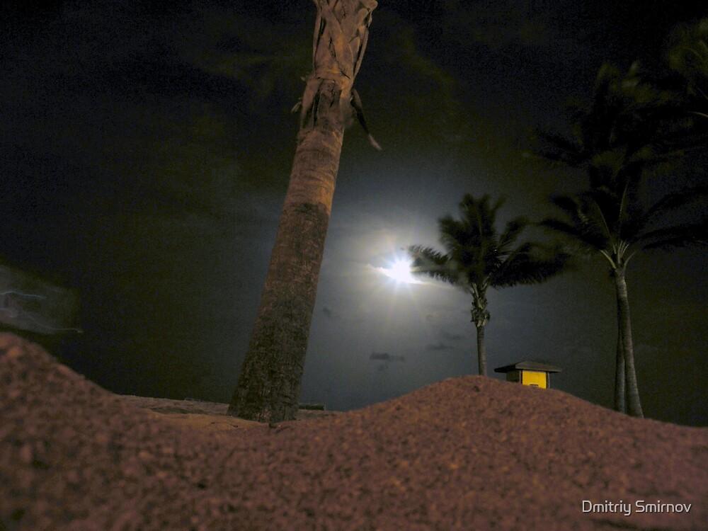 moonlit dune by Dmitriy Smirnov