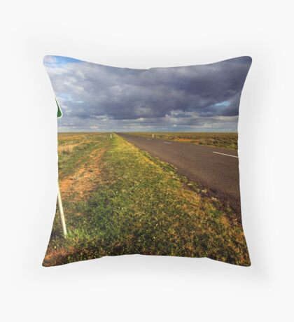 The Long Paddock - Hay Plains Throw Pillow