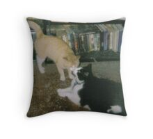 A Moment of Tenderness Throw Pillow