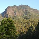 Mount Coxcombe in the Afternoon by Graham Mewburn