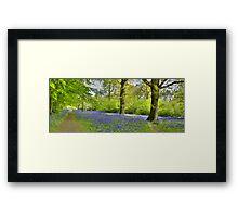 Walking with Bluebells Framed Print