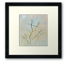 2015 May 1 Framed Print