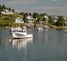 Boats at Rest by Alana Ranney