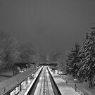 Scarsdale train station. by Daniel Sorine