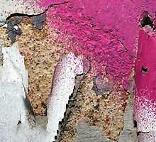 Pink on Concrete by tinaodarby