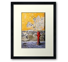 I wasn't born to lo(o)se you Framed Print