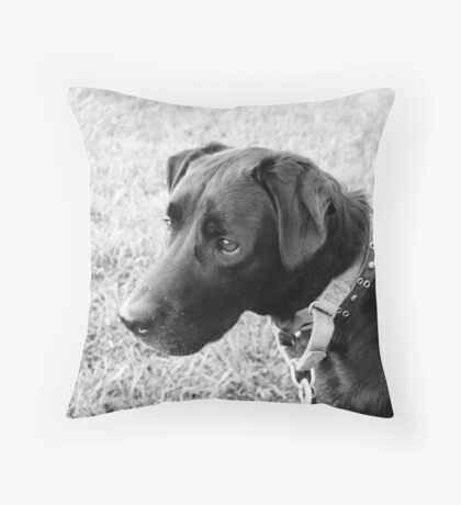 You have my attention.... Throw Pillow