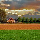 Polder House by Adri  Padmos