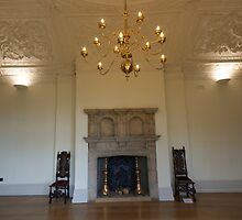 Hall Place Fire Place by davesphotographics