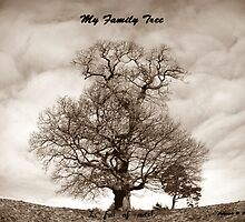My Family Tree - is full of nuts by trish725