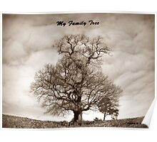 My Family Tree - is full of nuts Poster
