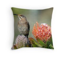 Sugarbird II Throw Pillow