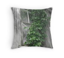Come to my window Throw Pillow