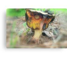 Freaky Fungus Canvas Print
