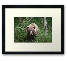 Just Going Back To My Fishin' Hole  Framed Print