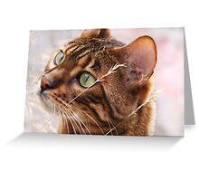 Puddy Kat Greeting Card