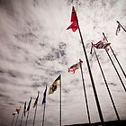 Flags of a Nation by Stephen Rowsell
