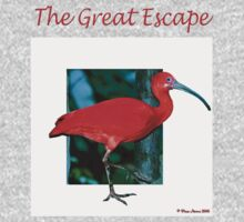 The Great Escape Tee by Pam Moore