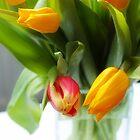 Tulips in a glass vase by Malgorzata Larys