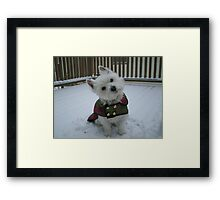 Winter Winnie Framed Print