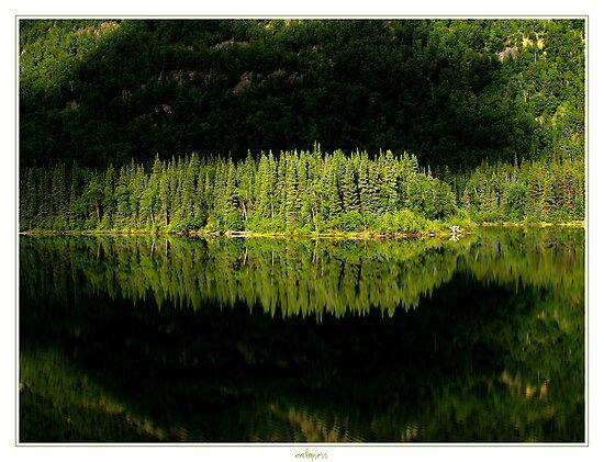 calmness by Priska Wettstein