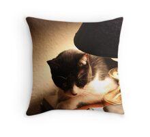 Sun Tanning Cat Throw Pillow
