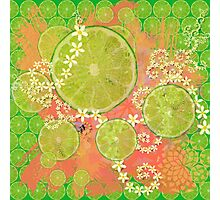 Lime Feast Photographic Print