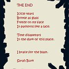 THE END by Sarah  Burk
