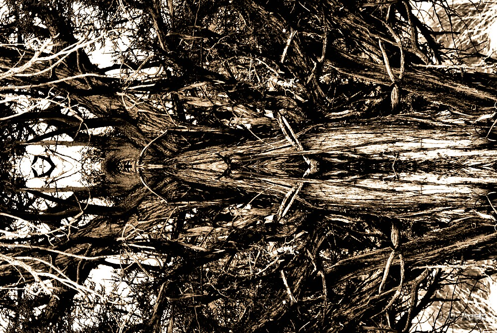 Inkblot for the Soul by J. D. Adsit