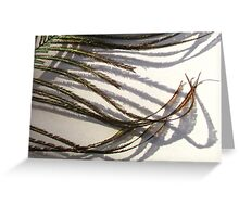 Featherflow Greeting Card