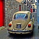 Beetle Alley by Clayton  Turner