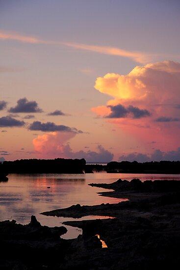 Painted Skies by Varinia   - Globalphotos