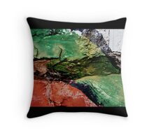 Green Paint on Brick Throw Pillow