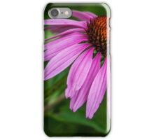 Bumblebee on cone flower iPhone Case/Skin