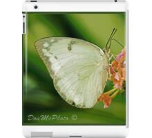 Large White Butterfly Asia (I) iPad Case/Skin