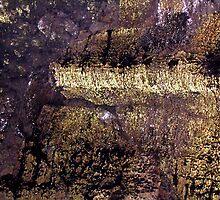 Galapagos gold... by Haydee  Yordan