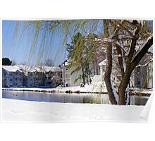 Willows in the Snow Poster