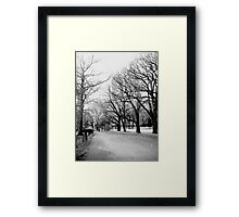 Cold Limbs Framed Print