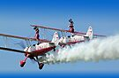 """Guinot"" Wing Walkers by Colin  Williams Photography"