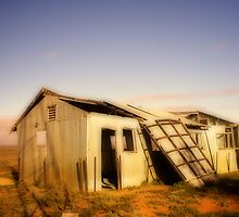 Tumble Down Shed by Mel Sarovic